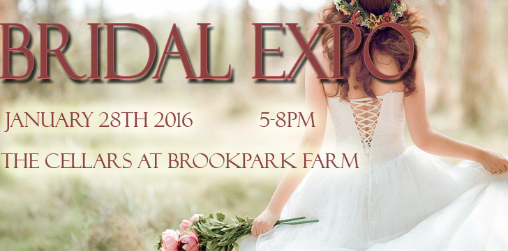 Bridal Expo 2016 2 copy