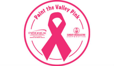 paint the valley pink FEAT