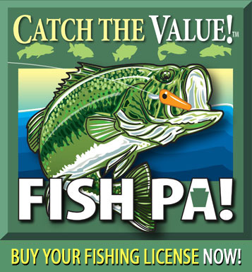 Bass season kicks off june 18th for Pa boat and fish commission