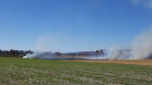 field-fire-grass-brush